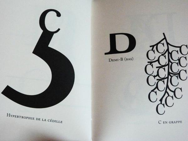 Typographie inusuelle - Pantanella Marc - 9782912667960 ...